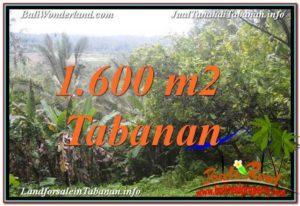 Exotic PROPERTY Tabanan Selemadeg 1,600 m2 LAND FOR SALE TJTB348