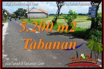 Affordable 5,200 m2 LAND FOR SALE IN TABANAN BALI TJTB351