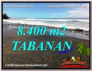 LAND SALE IN Tabanan Selemadeg BALI TJTB326