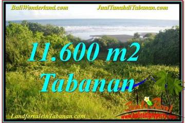 Exotic TABANAN LAND FOR SALE TJTB340