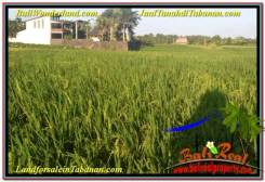 Exotic 11,600 m2 LAND FOR SALE IN Tabanan Selemadeg TJTB340