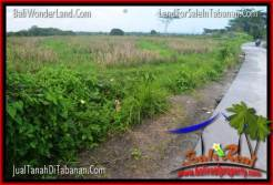 Beautiful PROPERTY TABANAN BALI LAND FOR SALE TJTB343