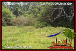 FOR SALE Affordable LAND IN Tabanan Selemadeg BALI TJTB346