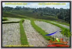 FOR SALE Exotic 7,600 m2 LAND IN Tabanan Selemadeg BALI TJTB347