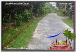 Beautiful PROPERTY TABANAN BALI LAND FOR SALE TJTB348