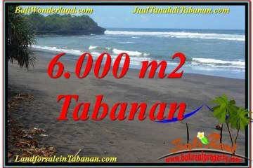 FOR SALE Exotic PROPERTY 6,000 m2 LAND IN Tabanan Selemadeg TJTB345
