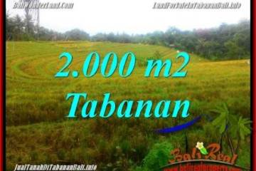 , cheap land for sale in Tabanan Bali