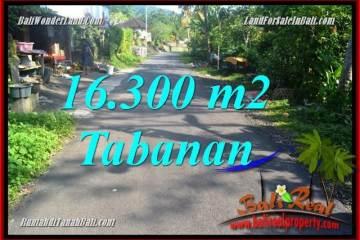 Magnificent TABANAN BALI 16,300 m2 LAND FOR SALE TJTB361
