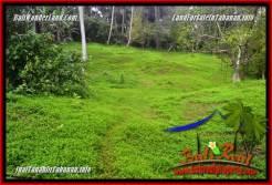 Affordable Tabanan Selemadeg LAND FOR SALE TJTB354