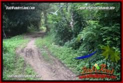 Exotic PROPERTY TABANAN 500 m2 LAND FOR SALE TJTB362