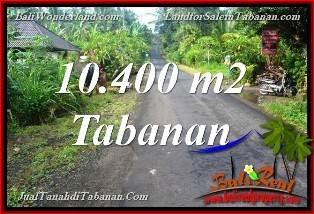 Beautiful 10,400 m2 LAND IN TABANAN FOR SALE TJTB369