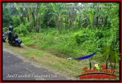 Beautiful 9,190 m2 LAND FOR SALE IN TABANAN Selemadeg Timur BALI TJTB368