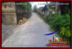 Affordable PROPERTY Tabanan Selemadeg BALI 1,500 m2 LAND FOR SALE TJTB375