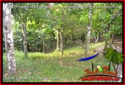 Affordable TABANAN BALI 5,736 m2 LAND FOR SALE TJTB376
