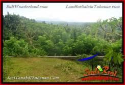 Exotic PROPERTY 1,600 m2 LAND FOR SALE IN TABANAN Selemadeg BALI TJTB378