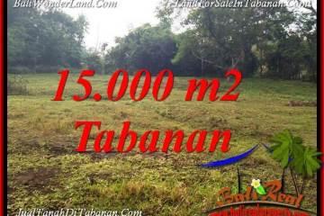 Beautiful TABANAN KOTA 15,000 m2 LAND FOR SALE TJTB381