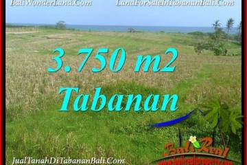 Affordable TABANAN BALI LAND FOR SALE TJTB382