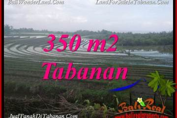 Beautiful PROPERTY TABANAN SELEMADEG LAND FOR SALE TJTB386