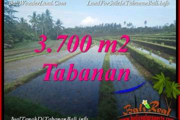 FOR SALE Affordable LAND IN TABANAN TJTB388