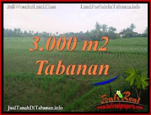 Beautiful LAND SALE IN TABANAN SELEMADEG TJTB389