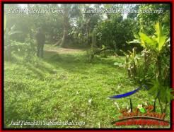 FOR SALE Affordable PROPERTY LAND IN TABANAN BALI TJTB388