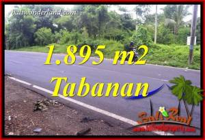 Exotic Property Land in Tabanan Bali for sale TJTB399