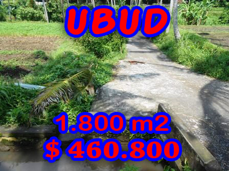 Land for sale in Ubud Bali by the roadside in Ubud Center