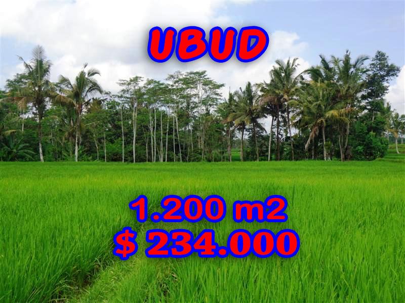 Land for sale in Bali 1.200 sqm terraced paddy view in Ubud Tegalalang