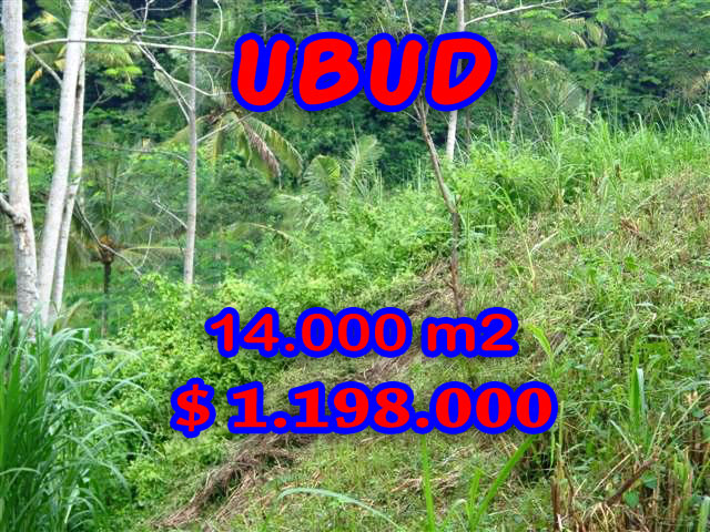 Exceptional Property in Bali, Land for sale in Ubud Bali – 14.000 sqm @ $ 86