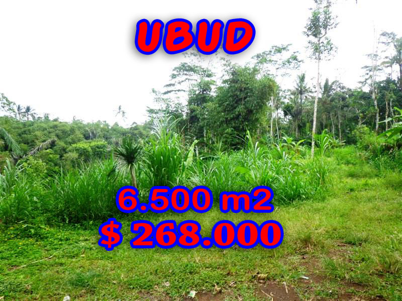 Exceptional Property in Bali, Land for sale in Ubud Bali – 4.500 sqm @ $ 52