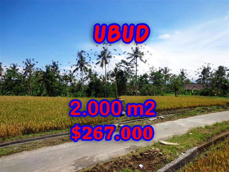 Land in Ubud Bali for sale, nice view in Ubud Tegalalang Bali – TJUB246