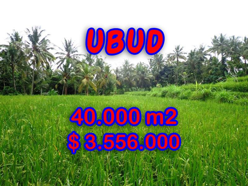 Land for sale in Ubud Bali, Great view in Ubud Tampak siring – TJUB269