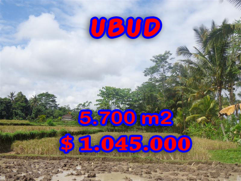Land for sale in Ubud Bali, Unbelievable view in Ubud Pejeng – TJUB279
