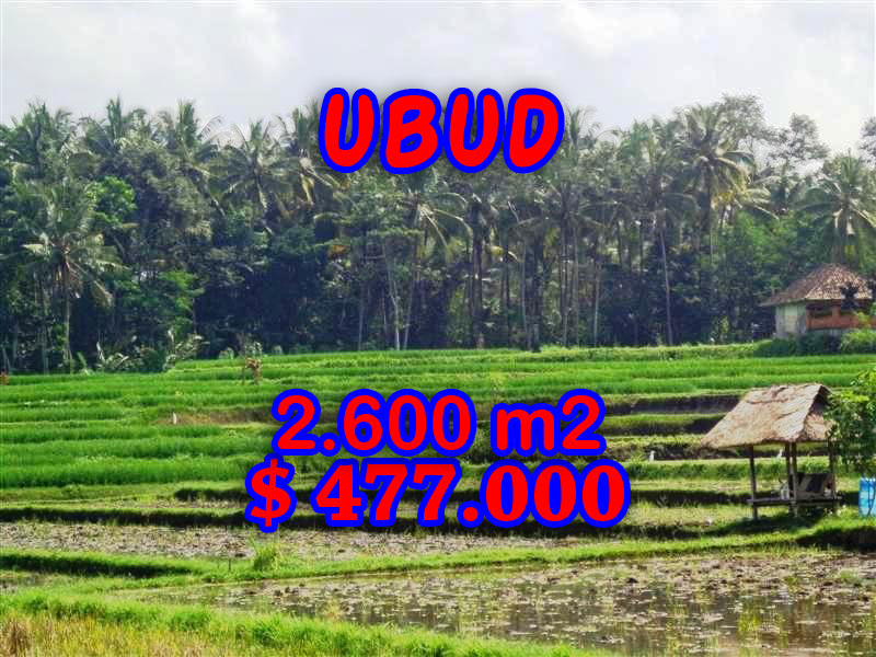 Land for sale in Ubud, nice view in Ubud Tampak Siring Bali – TJUB266