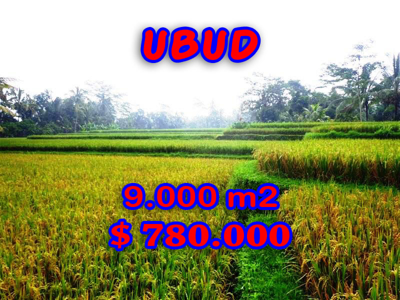 Attractive Property in Bali, Land for sale in Ubud Bali – 9.000 sqm @ $ 87