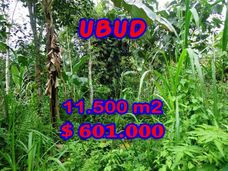 Splendid Property for sale in Bali, Ubud land for sale – 11.500 sqm @ $ 52