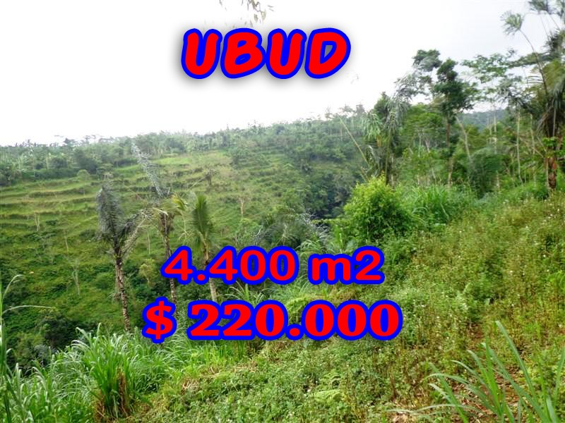 Land for sale in Bali, Fantastic view in Ubud Bali – 4.400 sqm @ $ 50