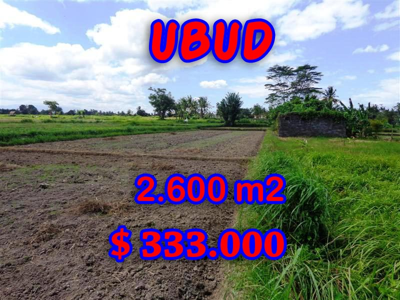 Land in Ubud Bali for sale Amazing rice fields and mountain view in  Ubud Center – TJUB300