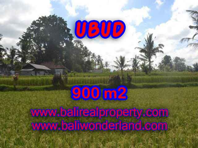 Extraordinary Land for sale in Ubud Bali, Rice fields and mountan view in Ubud Tegalalang– TJUB412