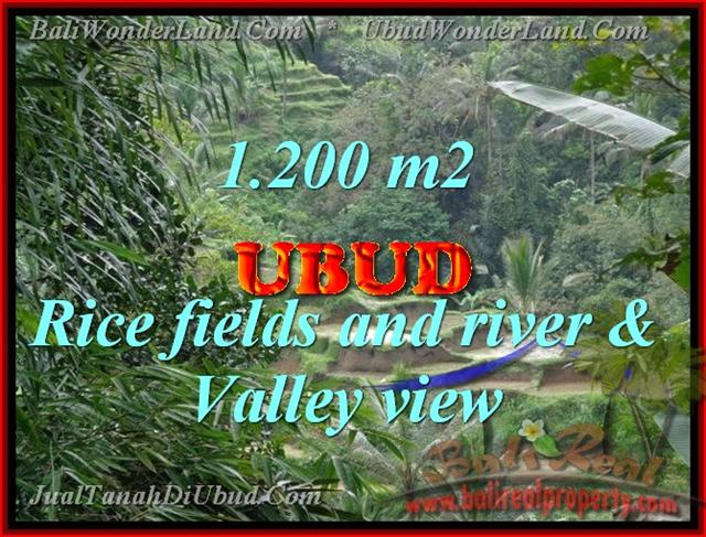 Land in Bali for sale, extraordinary view in Ubud Tegalalang – TJUB420