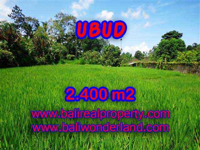 Magnificent Property in Bali for sale, land in Ubud Bali for sale – TJUB390