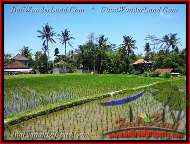 LAND FOR SALE IN Sentral Ubud TJUB436