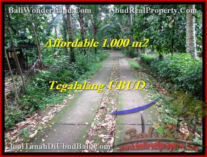 Exotic PROPERTY LAND IN Ubud Tegalalang BALI FOR SALE TJUB467