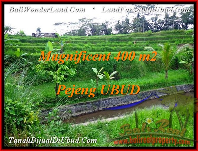 Beautiful UBUD BALI LAND FOR SALE TJUB483