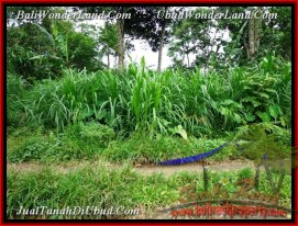 FOR SALE Affordable 1,300 m2 LAND IN UBUD TJUB481