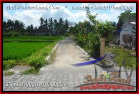 3.800 m2 LAND IN UBUD FOR SALE TJUB448