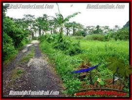 Sentral Ubud BALI LAND FOR SALE TJUB491
