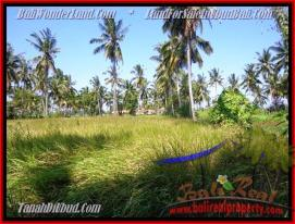 Beautiful PROPERTY 1,000 m2 LAND FOR SALE IN Sentral Ubud TJUB434