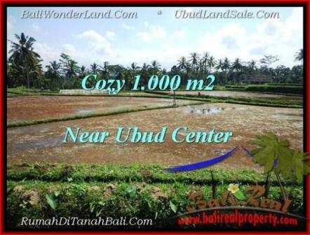 Affordable UBUD 1,000 m2 LAND FOR SALE TJUB501