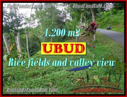 FOR SALE Exotic PROPERTY 1,200 m2 LAND IN UBUD BALI TJUB422